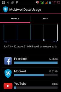 Internet monitor usage
