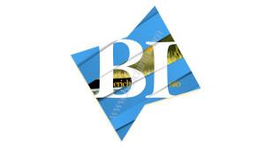 berich logo watermark